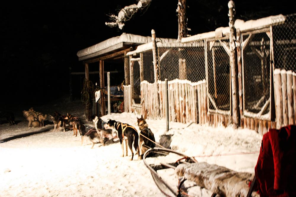 lapland-trip-2015-sweden-north-Lappland-urlaub-kiruna-19-5klein