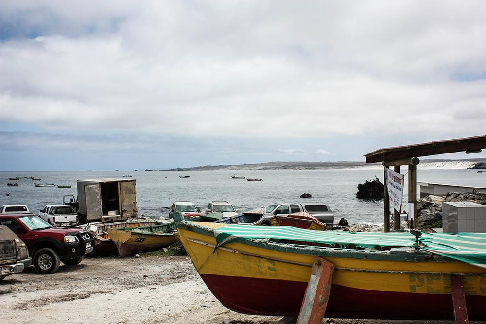 isla-damas-chile-southamerica-modeblog-travelblog-19k